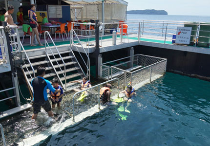 Borneo Reef - Glass Bottomed Pontoon