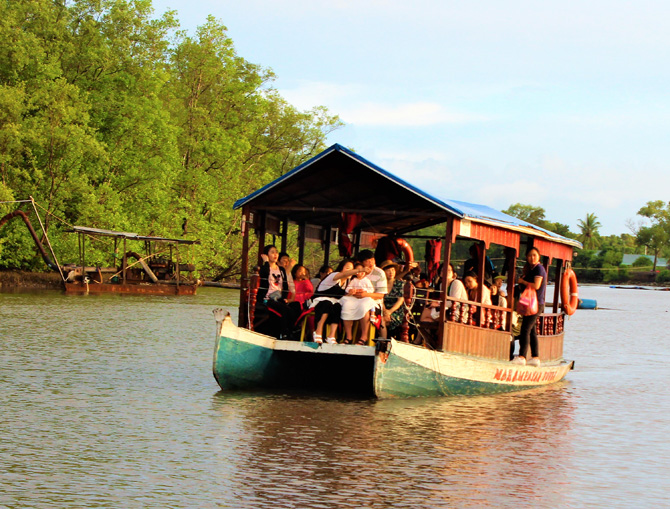 Kawa Kawa Mangrove And Fireflies Cruise