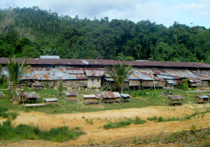 2D1N Traditional Iban Longhouse Safari