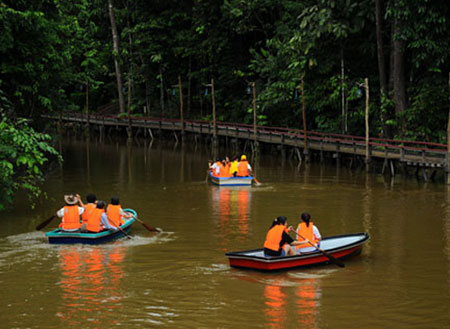2D1N Borneo Tropical Rainforest Resort Tours